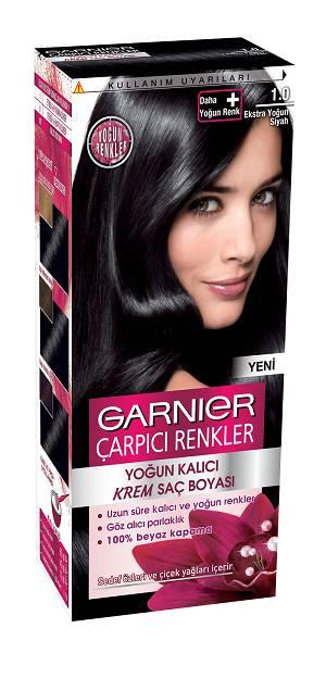 Garnier Carpici Renkler Serisi